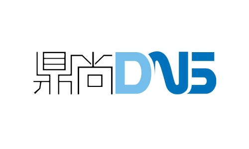 DNS Investment Management Logo
