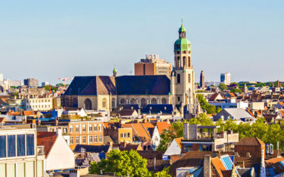 Belgium: Non-established Entities Exporting out of the EU